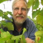 Freiburgs Bio-Winzer Jörg Scheel im Weinberg